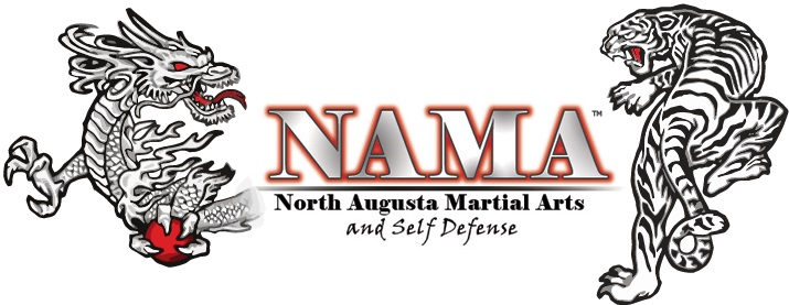 Dragon and Tiger North Augusta Martial Arts Logo